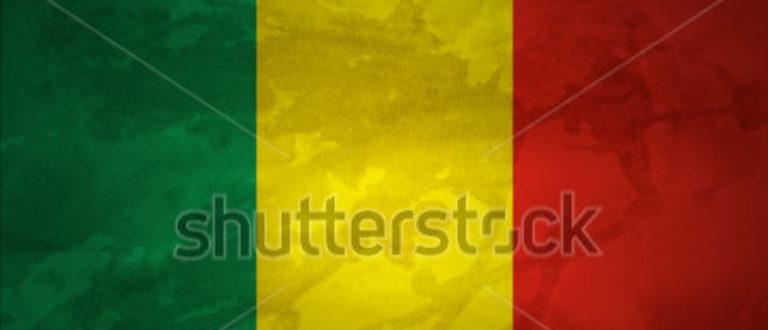 Article : Opération Mali