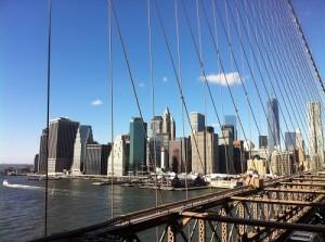 New York Cc Daye Diallo