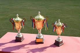 Trophées Cc Pixabay